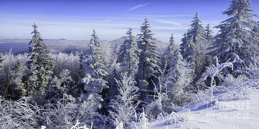 Winter Along The Highland Scenic Highway Photograph