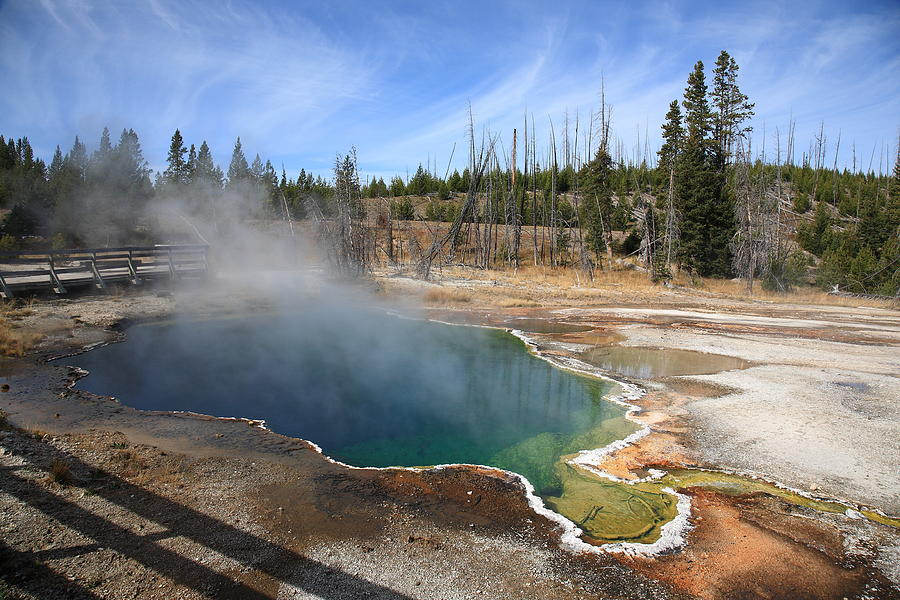 Yellowstone Park - Geyser Photograph