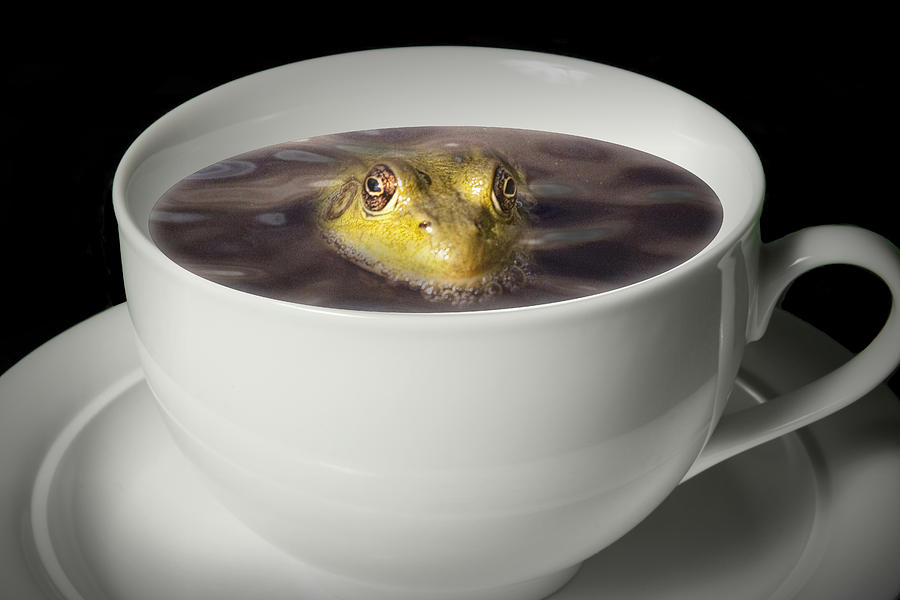 Yikes There Is A Frog In My Java Photograph  - Yikes There Is A Frog In My Java Fine Art Print