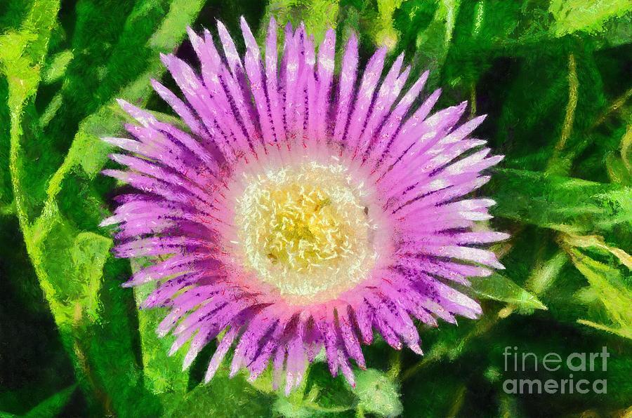 Spring Wild Flower Painting