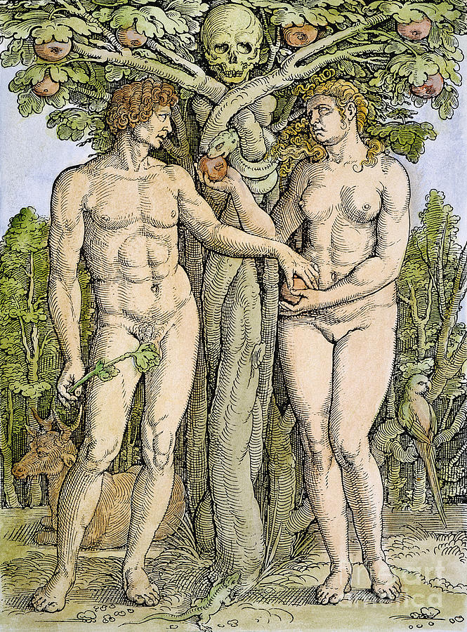 Adam And Eve Drawing  - Adam And Eve Fine Art Print
