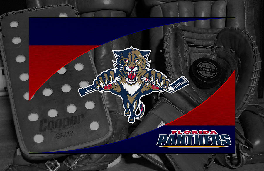 Panthers Photograph - Florida Panthers by Joe Hamilton