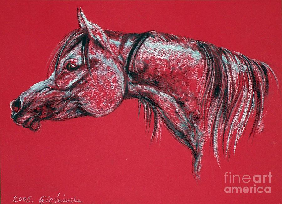 Horses Pastel - Arabian Horse  by Angel  Tarantella