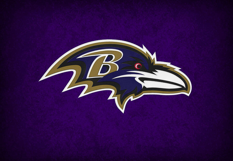 Baltimore Ravens Photograph  - Baltimore Ravens Fine Art Print