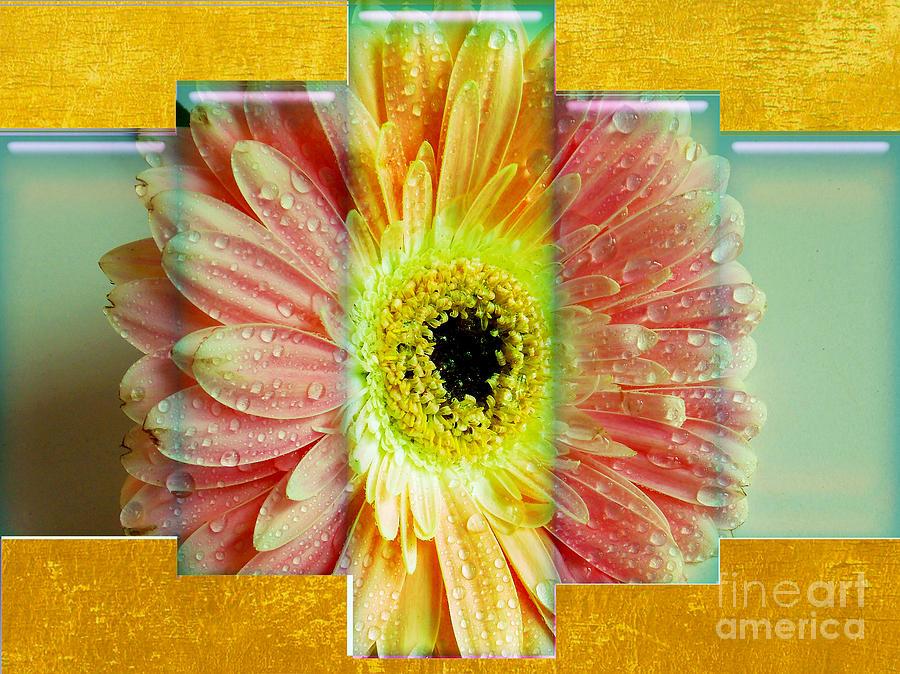 1420-multicolor Gerber Photograph