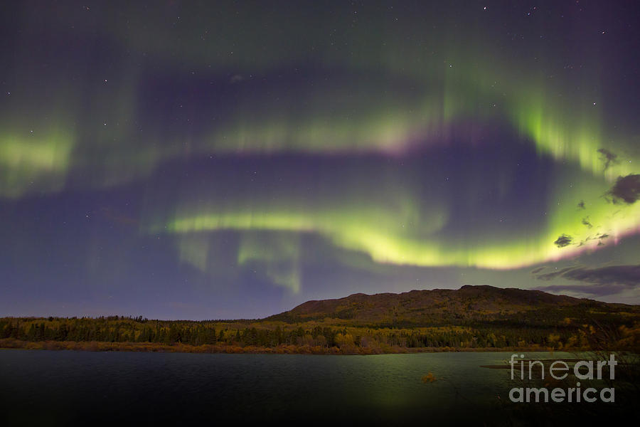 Aurora Borealis With Moonlight At Fish Photograph