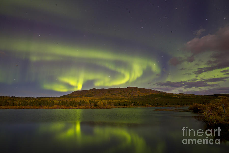 Aurora Borealis With Moonlight At Fish Photograph  - Aurora Borealis With Moonlight At Fish Fine Art Print