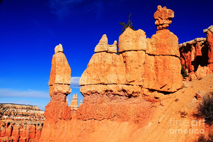 Bryce Canyon Photograph  - Bryce Canyon Fine Art Print