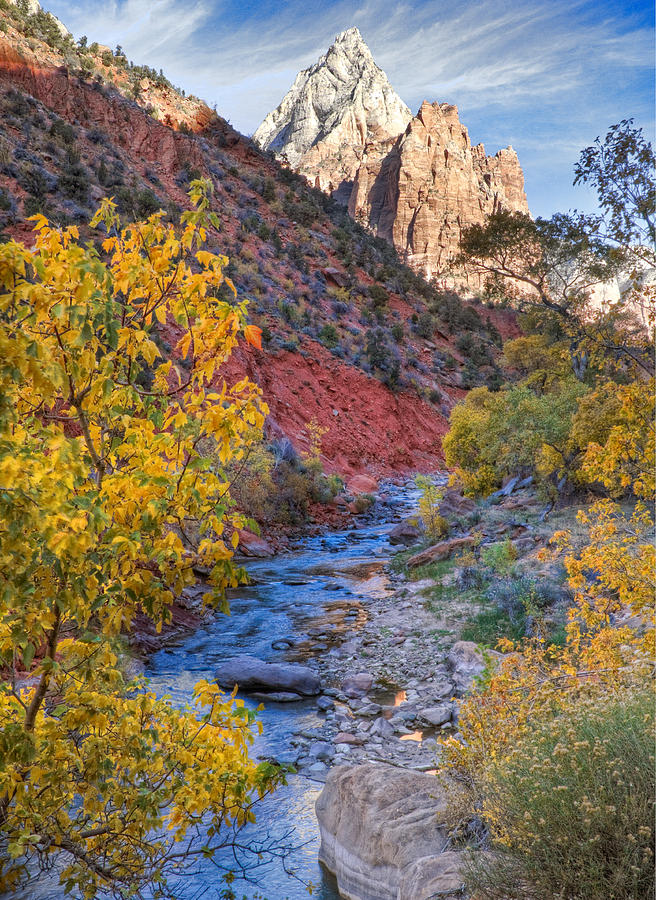 Zion National Park Utah Photograph