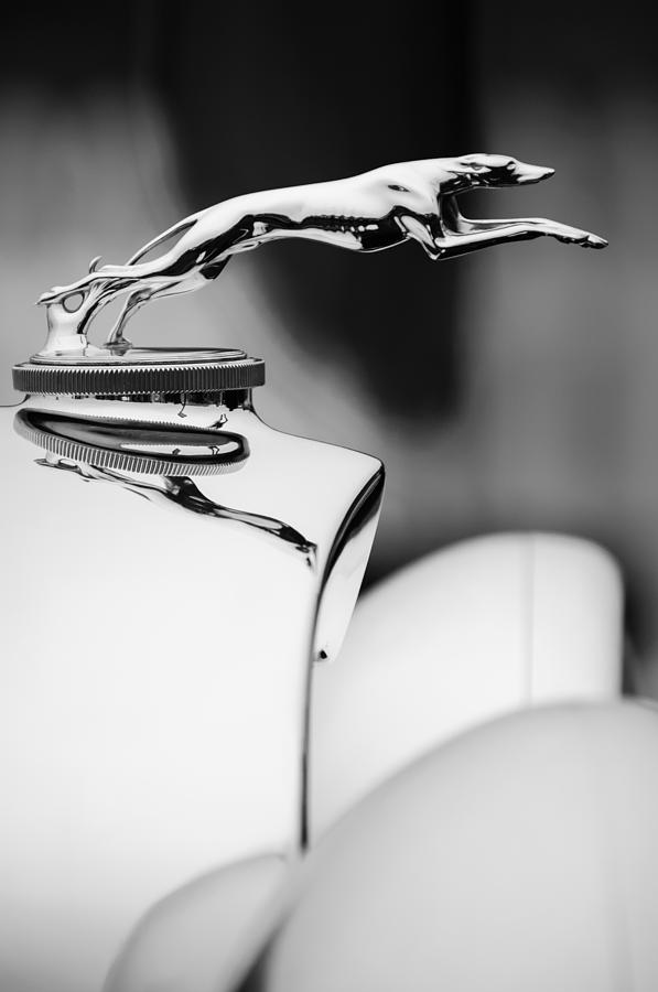 1931 Lincoln K Hood Ornament -1837bw Photograph