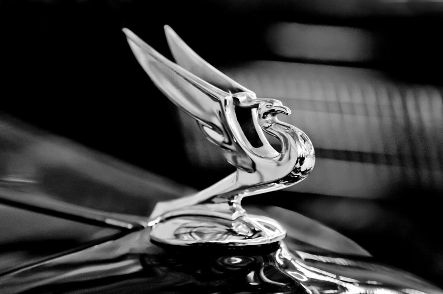 1935 Chevrolet Hood Ornament Photograph - 1935 Chevrolet Hood Ornament 3 by Jill Reger