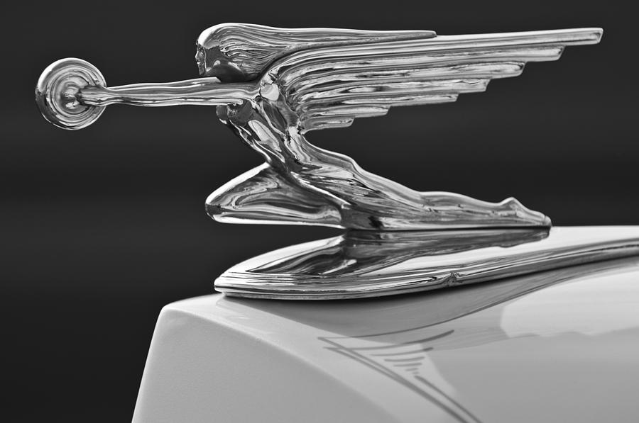 1936 Packard Hood Ornament 3 Photograph  - 1936 Packard Hood Ornament 3 Fine Art Print