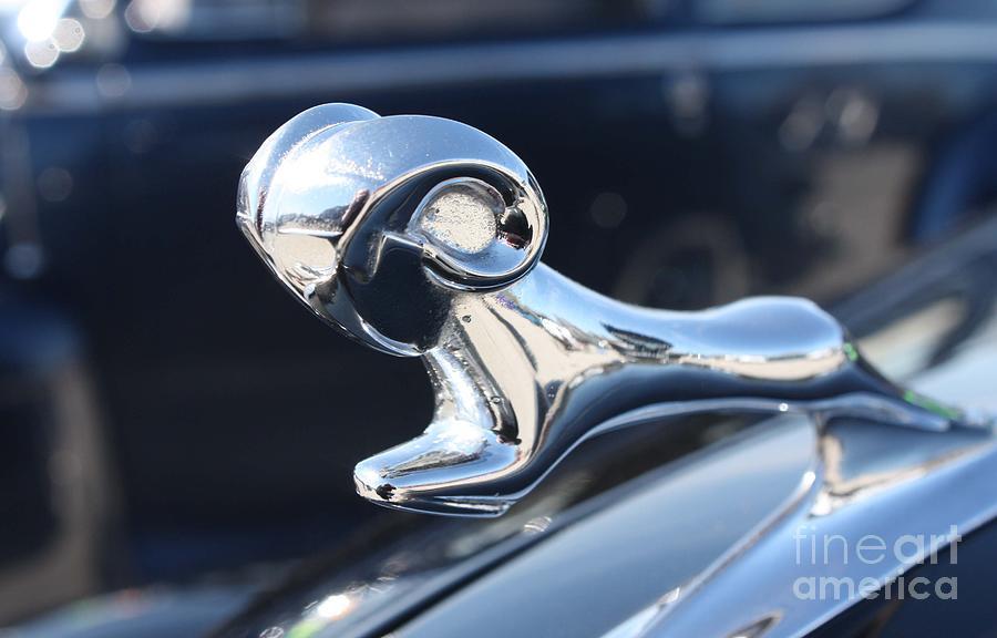 1938 dodge ram hood ornament photograph 1938 dodge ram hood ornament. Cars Review. Best American Auto & Cars Review