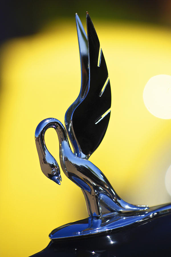 1939 Packard Hood Ornament Photograph