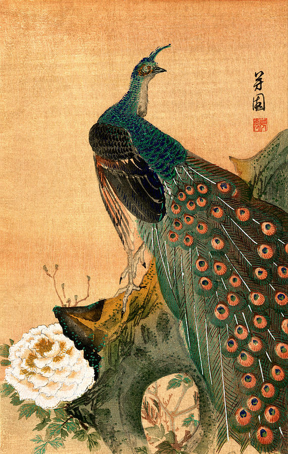 19th C Japanese Peacock Painting By Historic Image