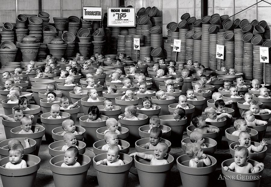 123 Pots Photograph