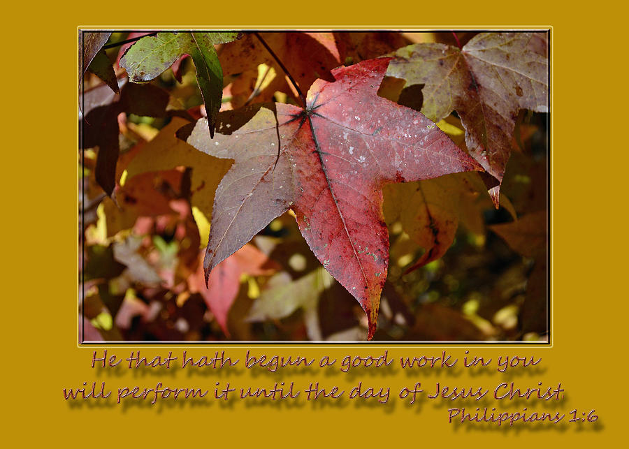 Scripture Photograph - A Good Work by Larry Bishop