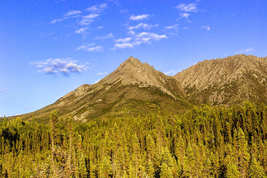 Trees Photograph - Alaska Mountains by Chad Dutson