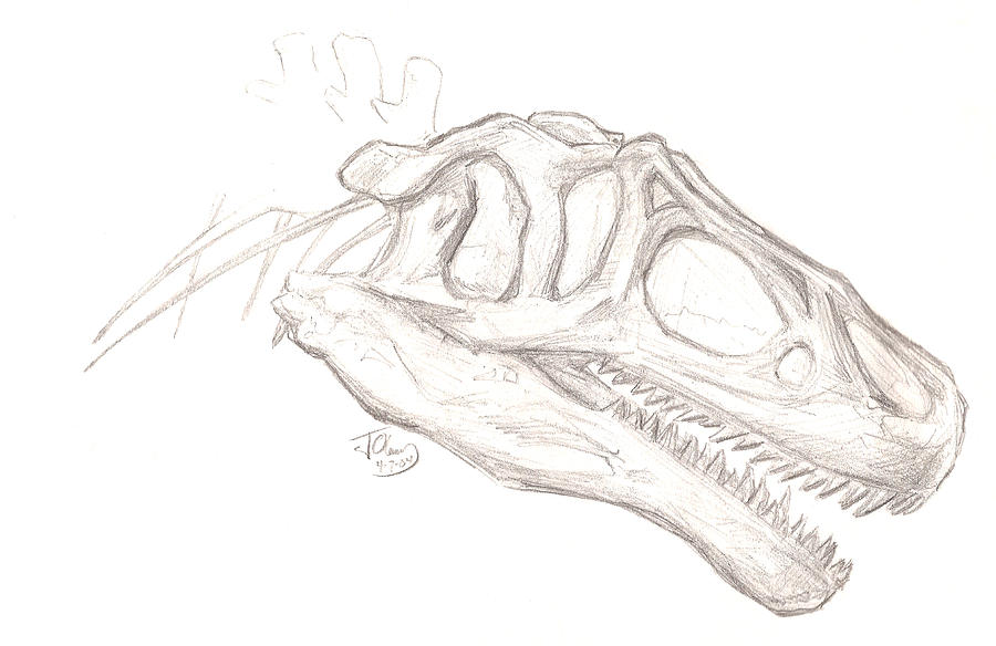 Drawing and Coloring Allosaurus Dinosaur For Learning
