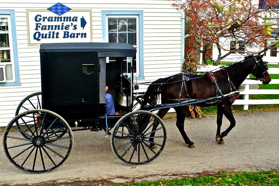 Amish Country Photograph