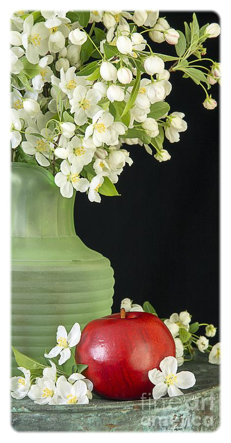 Apple Photograph - Apples by Edward Fielding