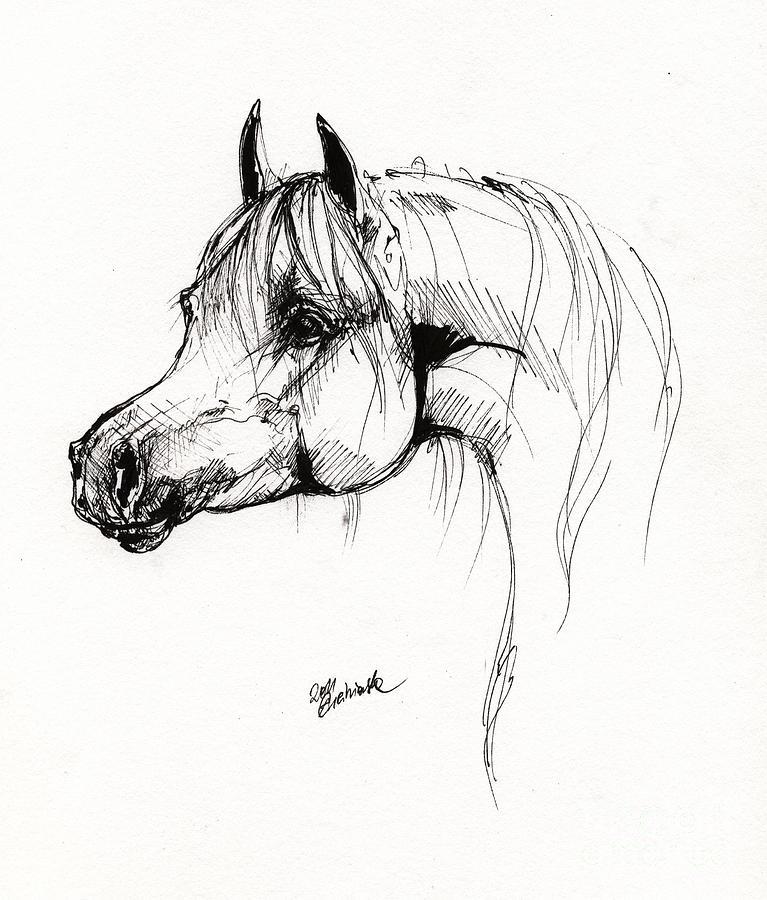 horse drawings clip art - photo #44