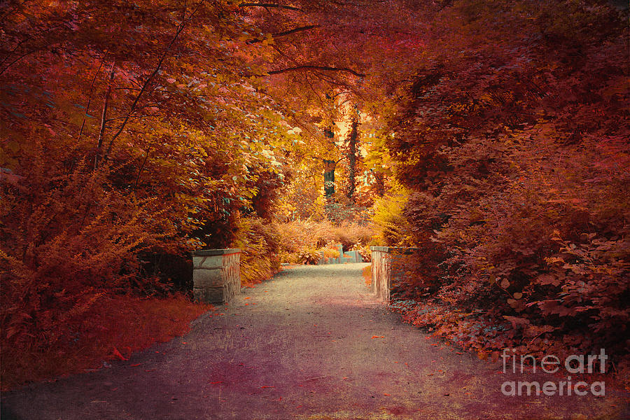 Autumn Photograph  - Autumn Fine Art Print