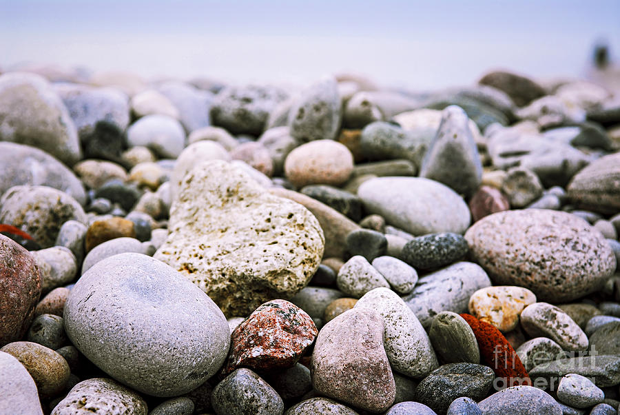Beach Pebbles Photograph  - Beach Pebbles Fine Art Print