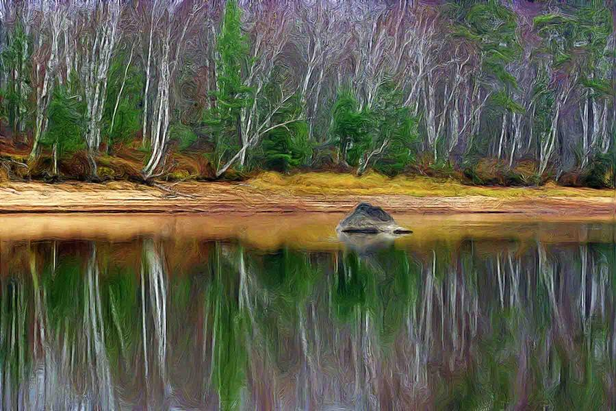 Landscape Image Of A Shoreline Of A River With Pine And Birch Trees Reflecting In The Water Photograph - Birch Shoreline by Pat Now