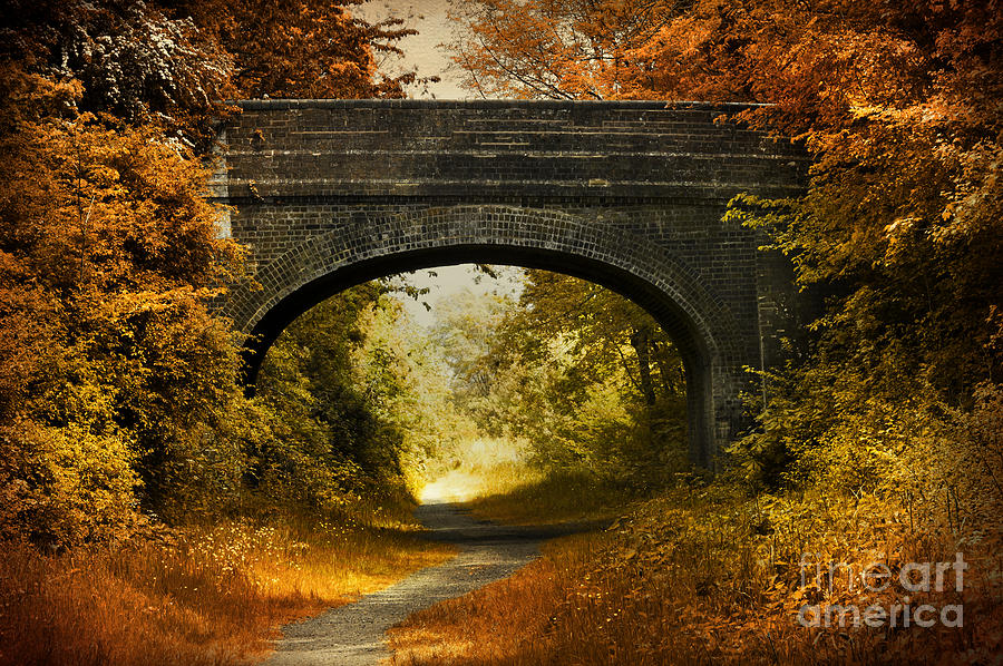 Bridge Photograph  - Bridge Fine Art Print