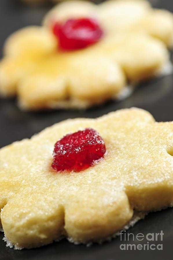 Cookie Photograph - Cookies by Elena Elisseeva