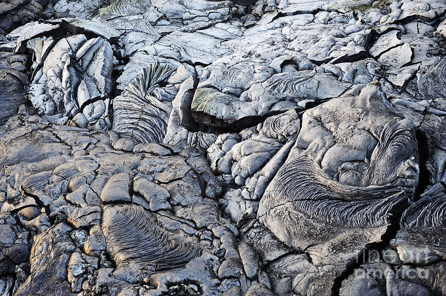 Cooled Pahoehoe Lava Flow Photograph  - Cooled Pahoehoe Lava Flow Fine Art Print