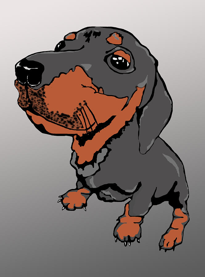 Dachshund Puppy Digital Art  - Dachshund Puppy Fine Art Print