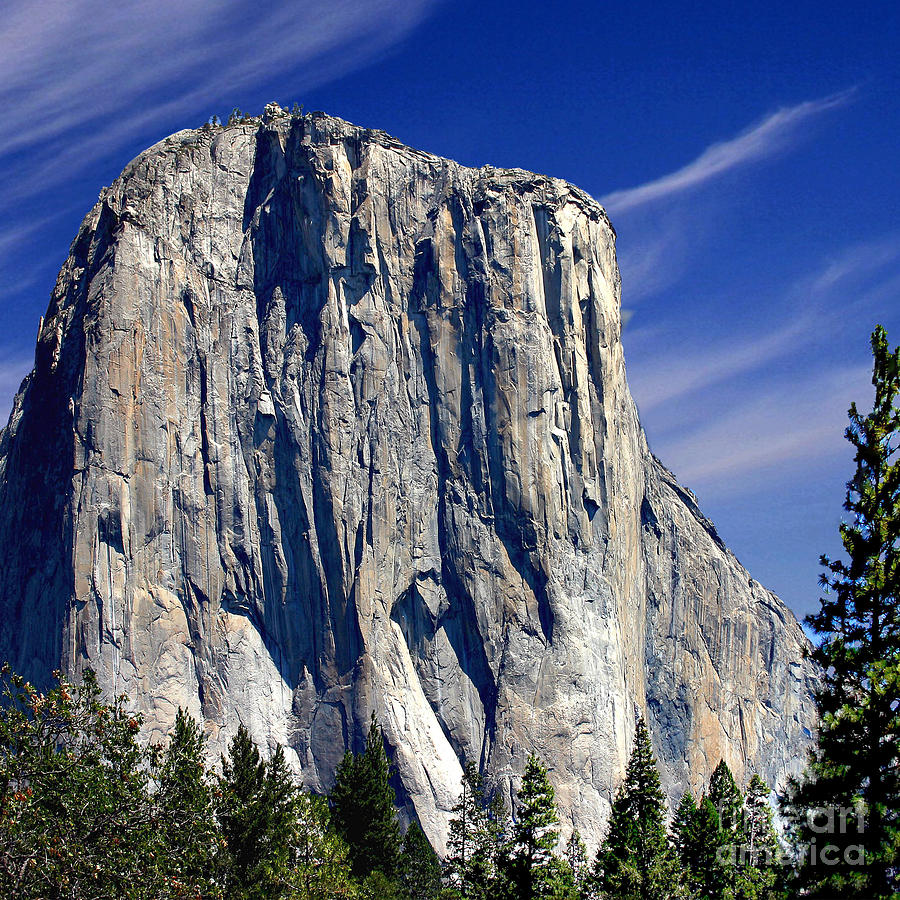 El Capitan Yosemite National Park Photograph