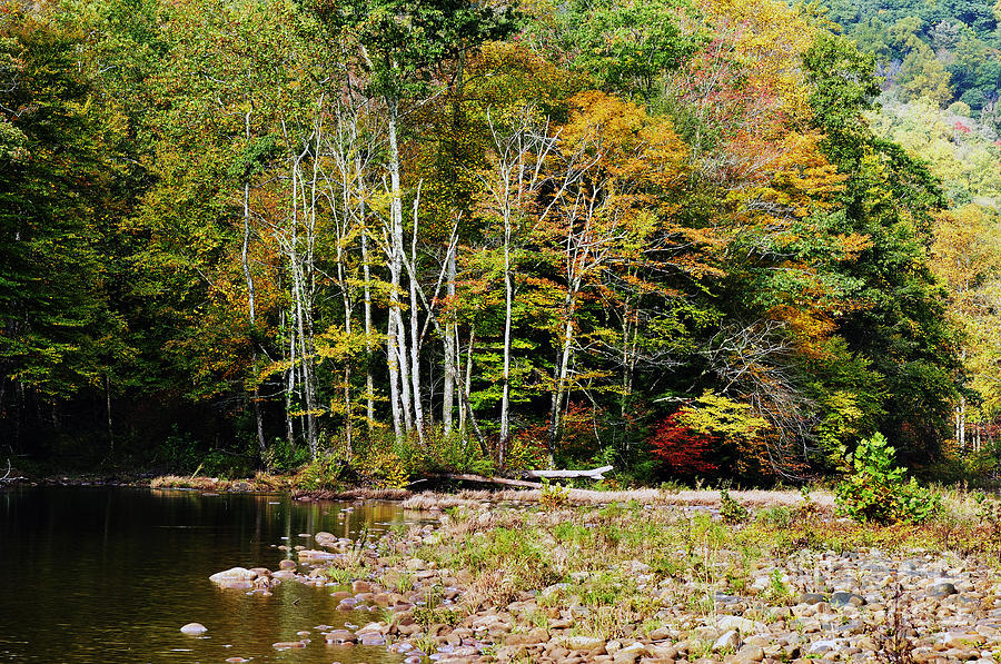 Fall Color River Photograph