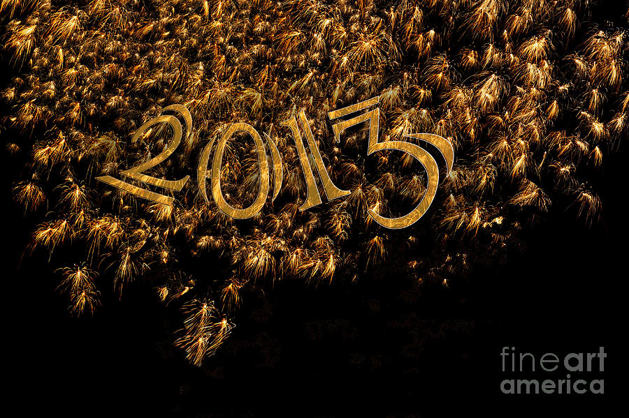Fireworks 2013 In Elegant Gold And Black Photograph  - Fireworks 2013 In Elegant Gold And Black Fine Art Print