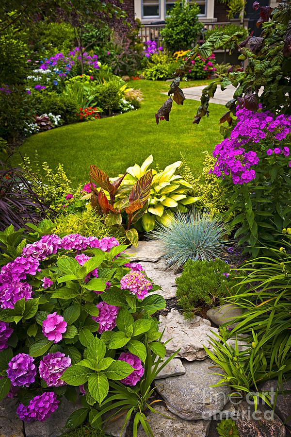 Flower Garden Photograph