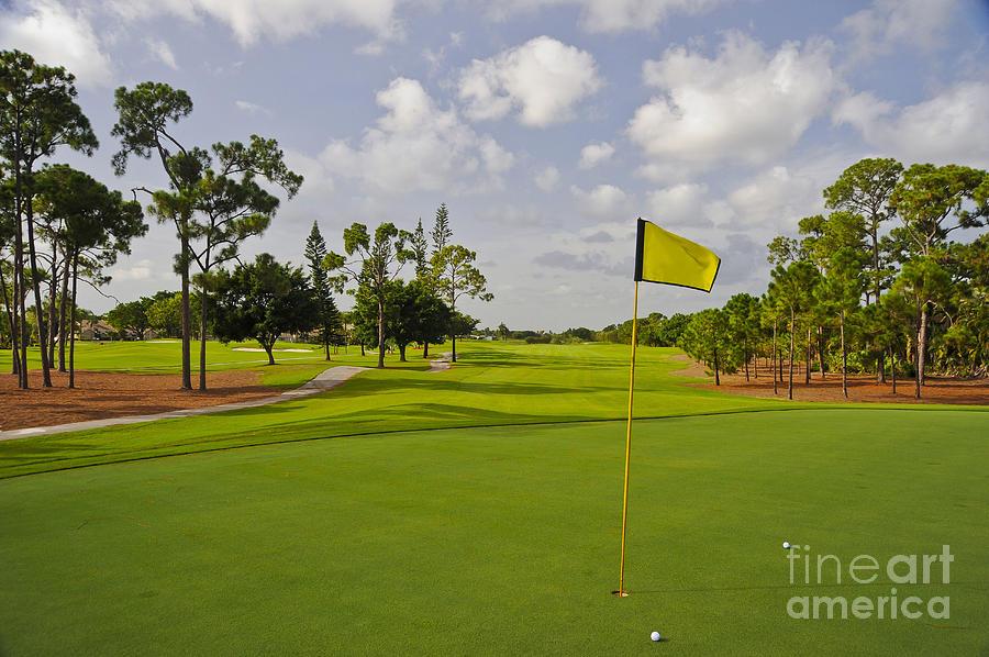 Golf Course Photograph