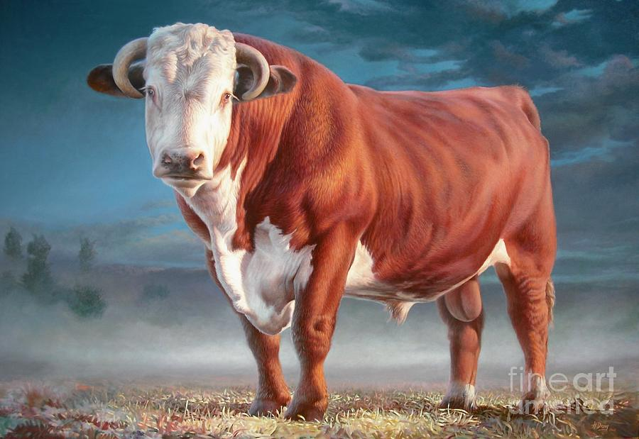 Hereford Bull Painting  - Hereford Bull Fine Art Print