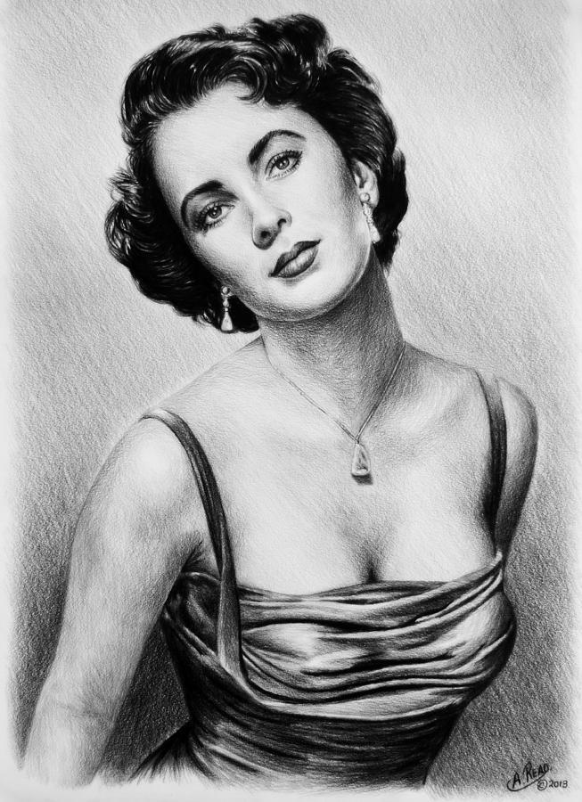 Hollywood Greats  Elizabeth Taylor Drawing