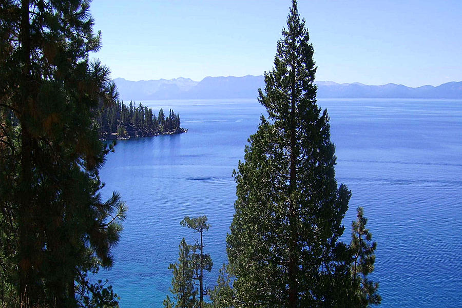 Lake Tahoe 4 Photograph  - Lake Tahoe 4 Fine Art Print