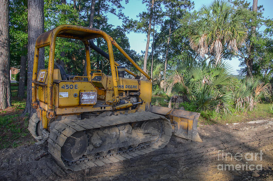 Land Clearing Photograph