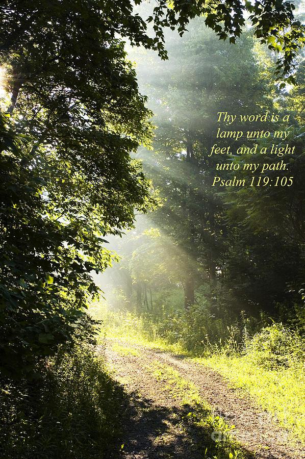 Light Unto My Path Photograph
