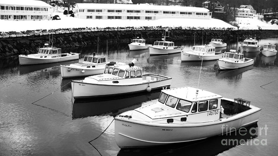 Lobster Boats Photograph