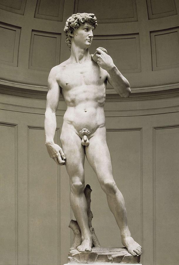 Vertical Photograph - Michelangelo 1475-1564. David by Everett