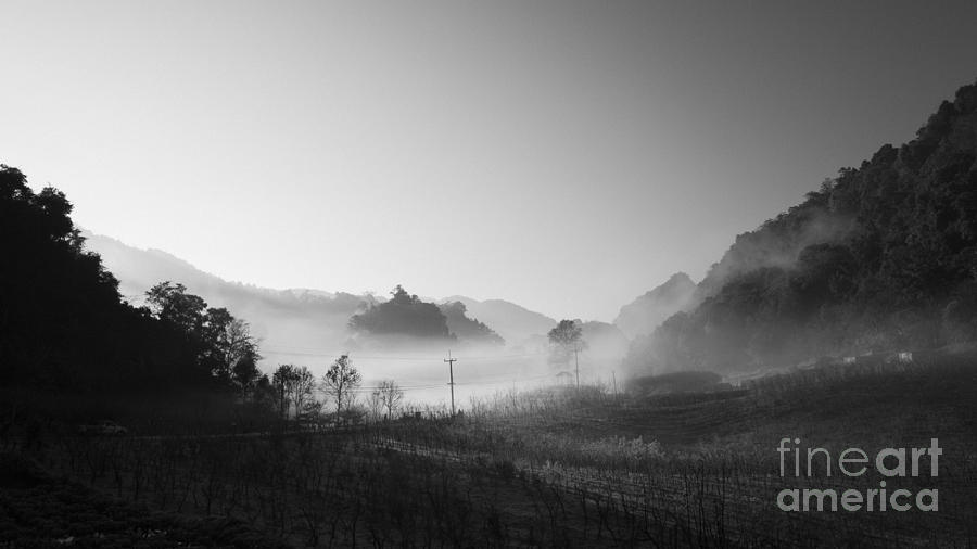 Mist In The Valley Photograph  - Mist In The Valley Fine Art Print
