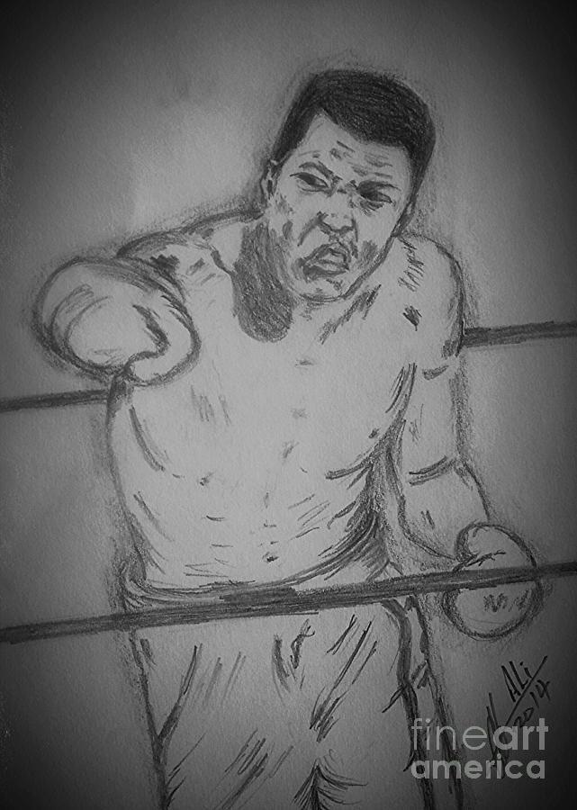 Muhammad Ali Drawing
