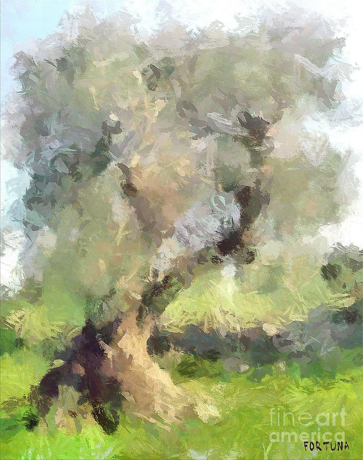 Old Olive Tree Painting  - Old Olive Tree Fine Art Print