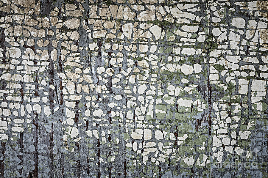Rustic Photograph - Old Painted Wood Abstract No.6 by Elena Elisseeva