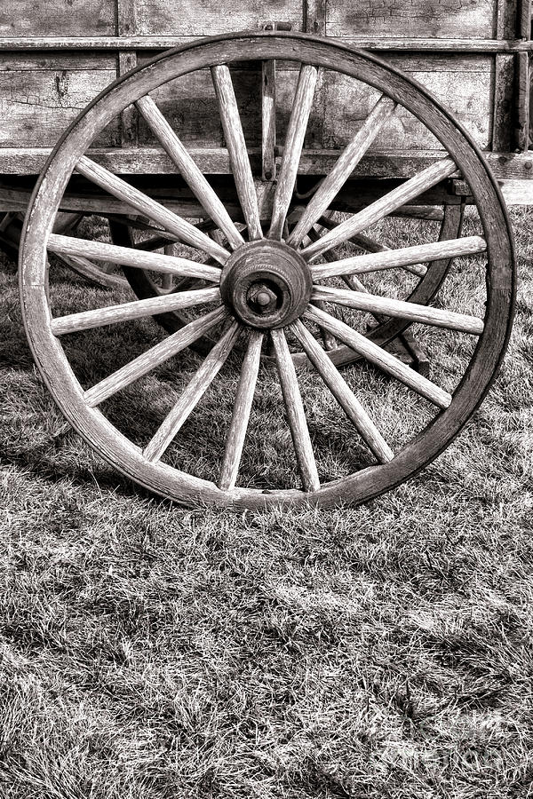 Old Wagon Wheel Photograph